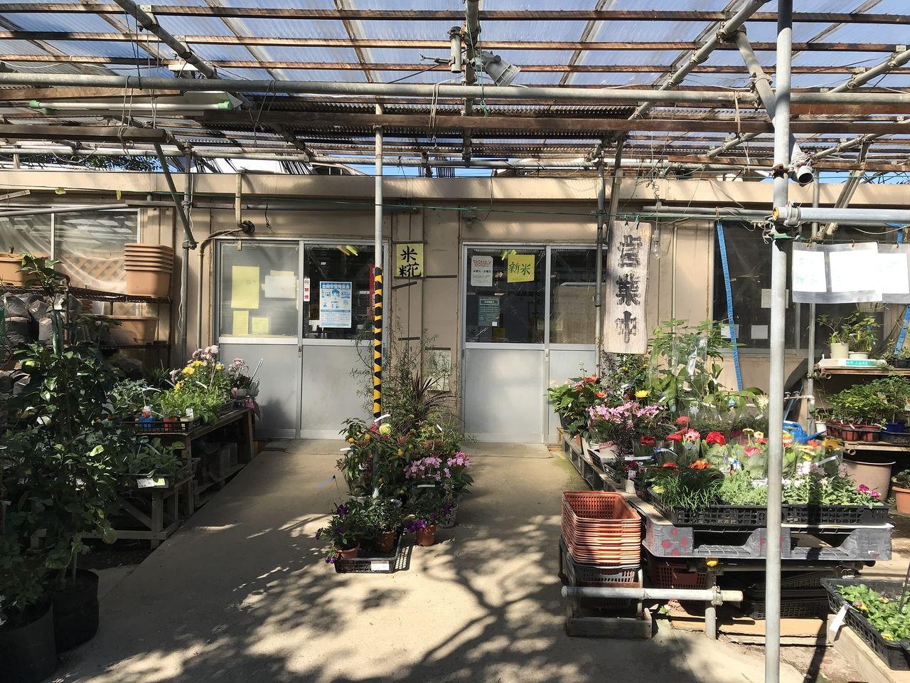 行徳の格三園芸センターの入口