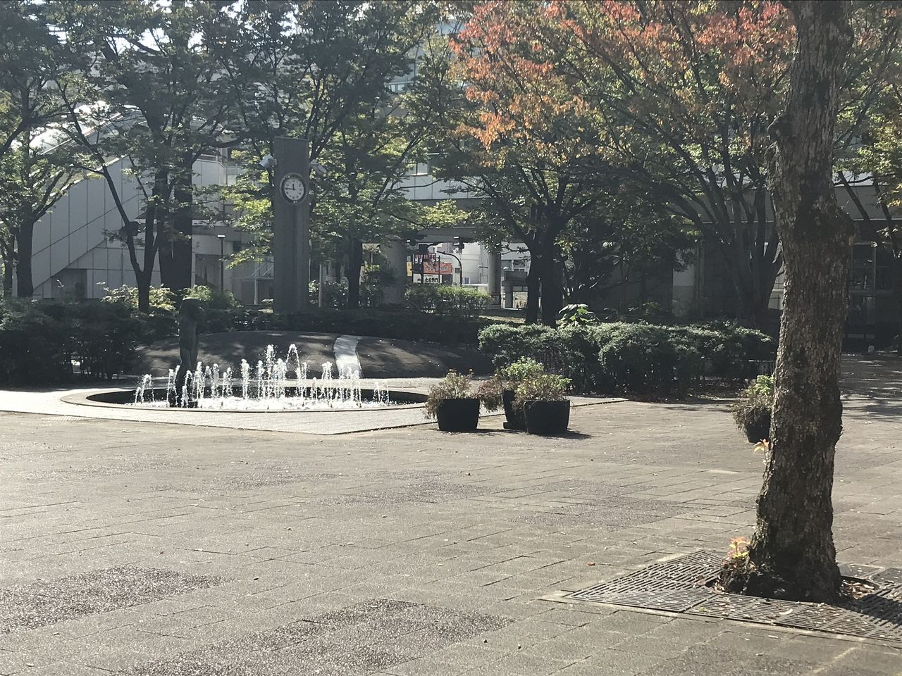 千葉県庁前の公園
