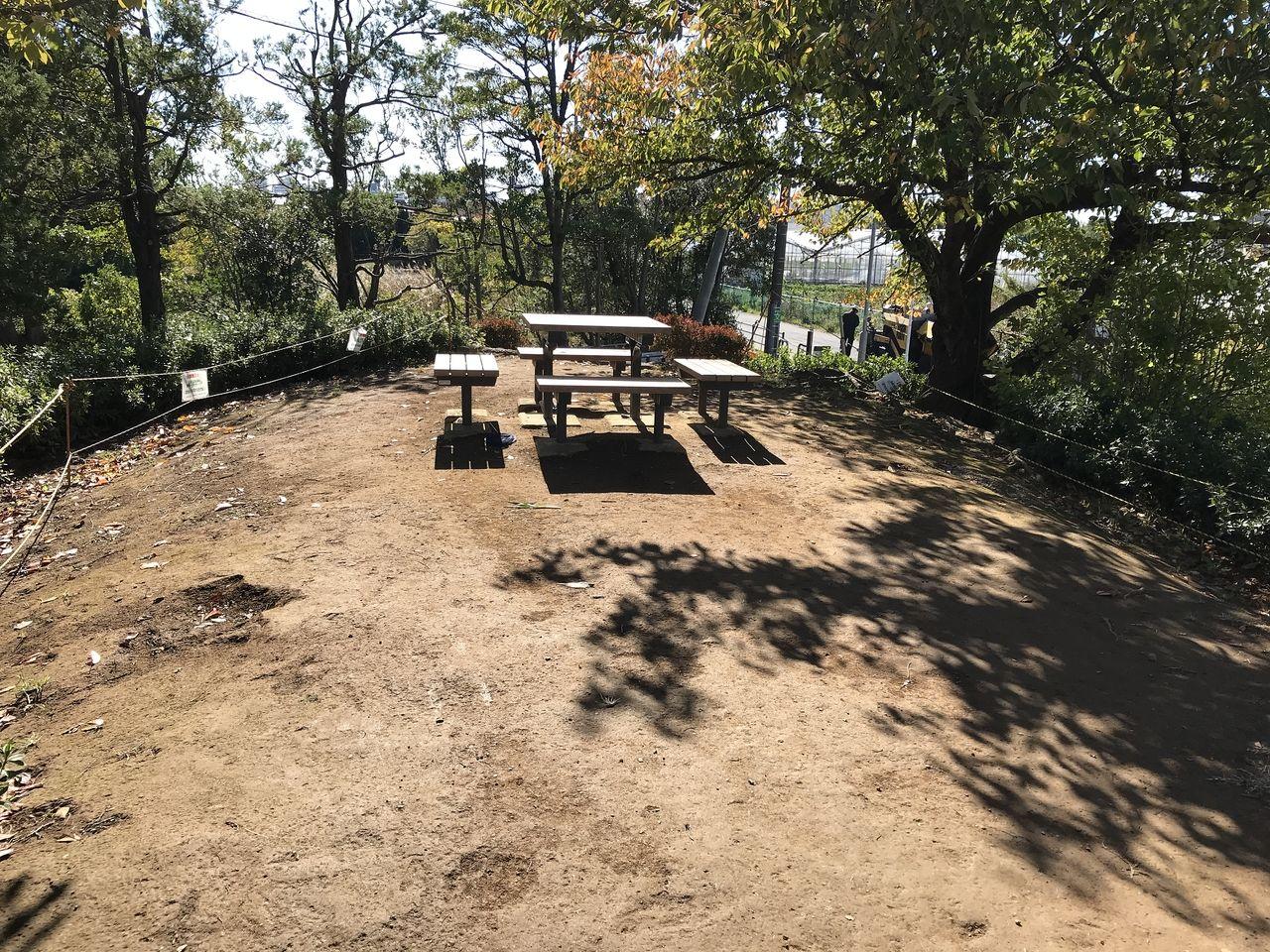 行徳の福栄公園の高台のベンチ