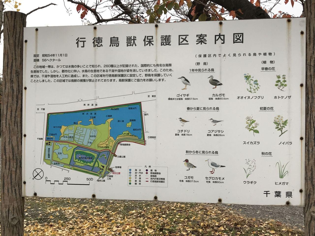 行徳鳥獣保護区案内図