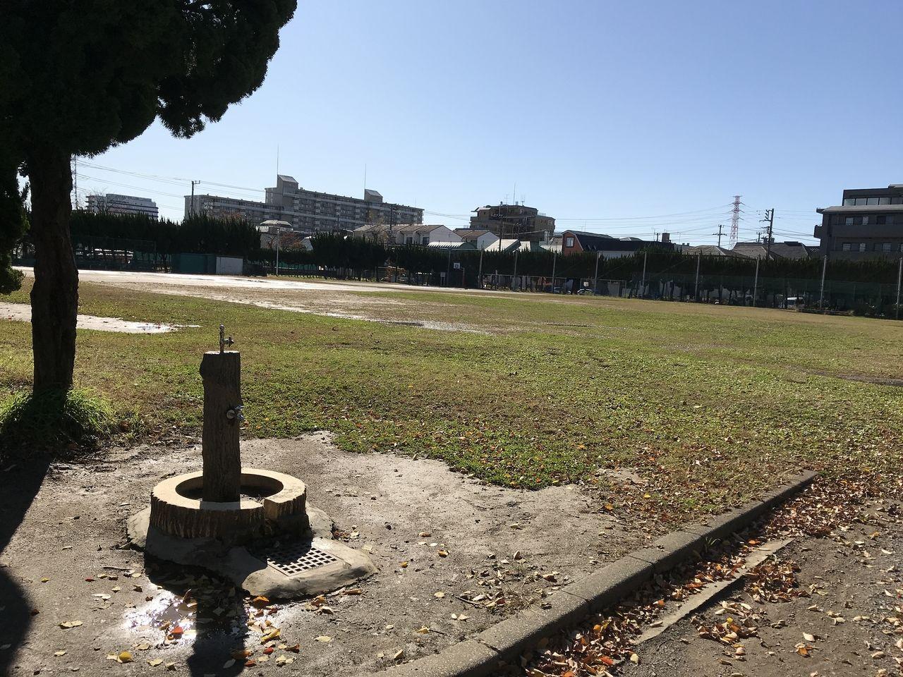 行徳の塩焼中央公園の野球場