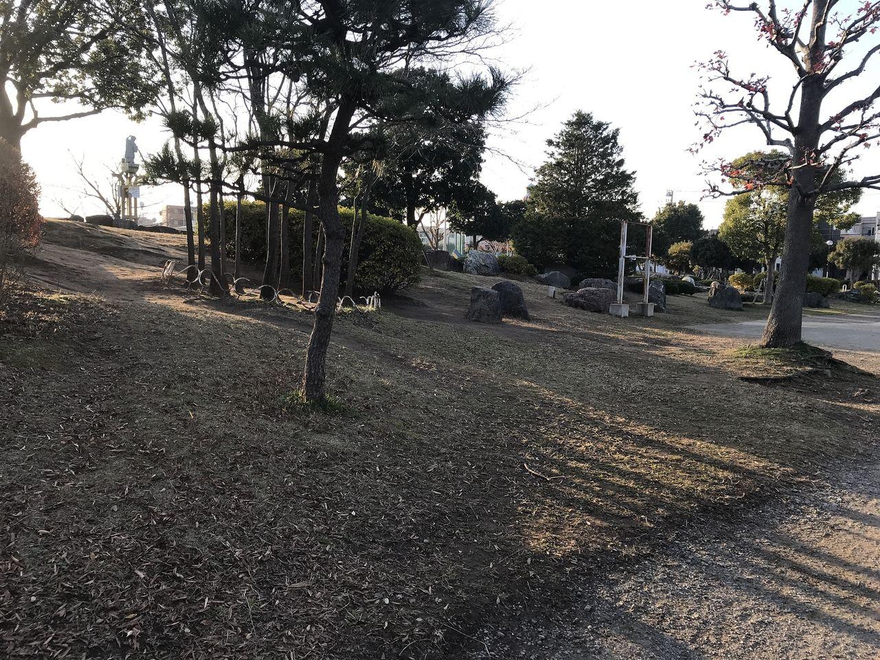 南行徳公園の斜面