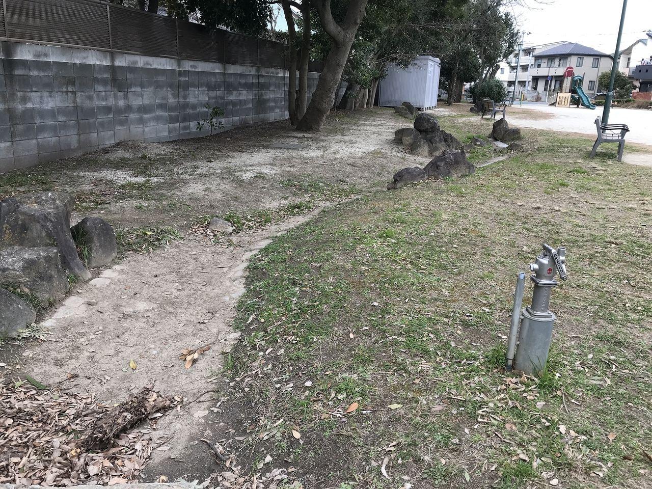 行徳の寺町公園の人工池