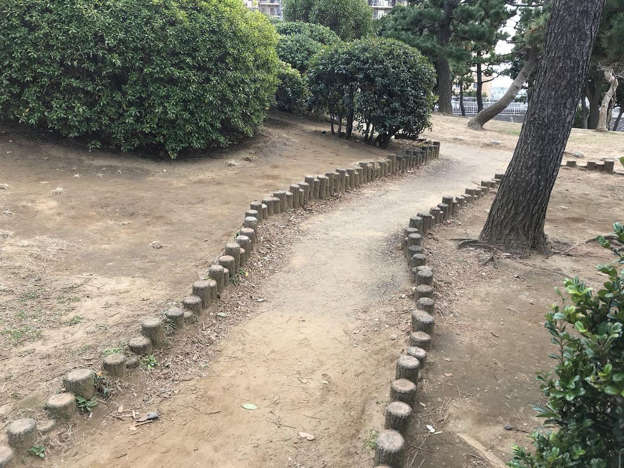 行徳の南部公園の丘への登り道