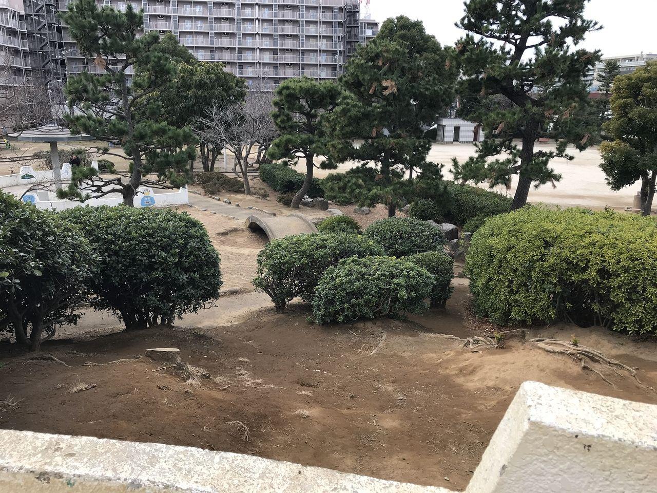 行徳の南部公園の庭園