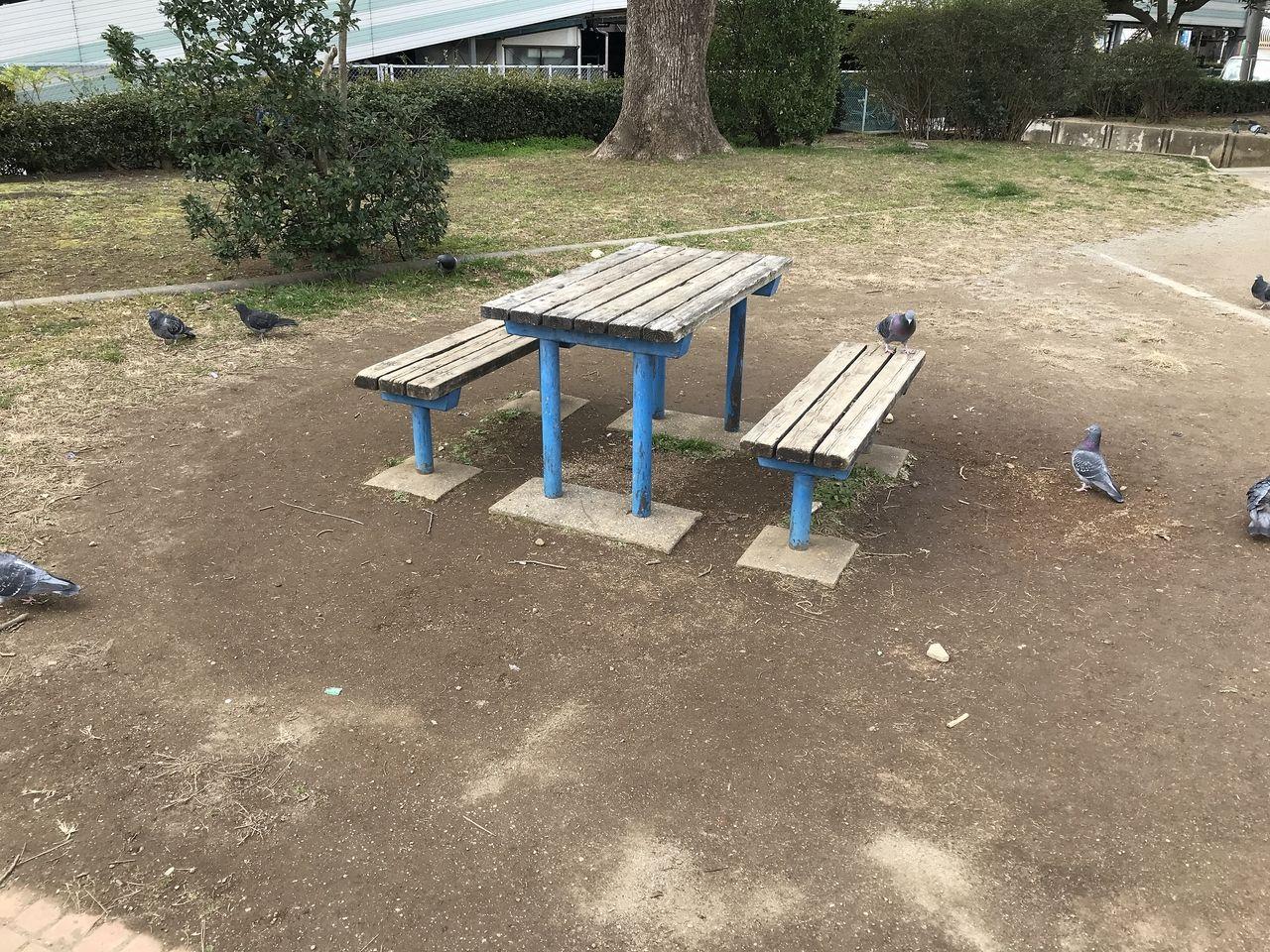 行徳の日本庭園?のある安全に配慮された公園「行徳南部公園」