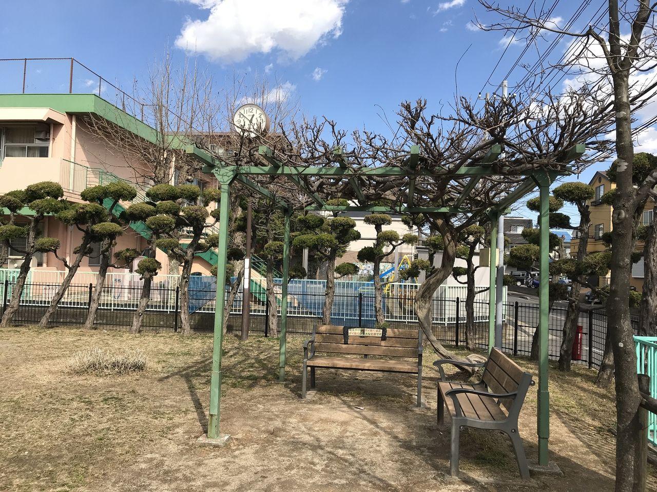 行徳の神輿公園の藤棚