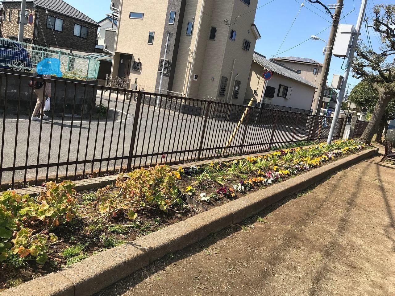 南行徳の蟹田公園の花壇