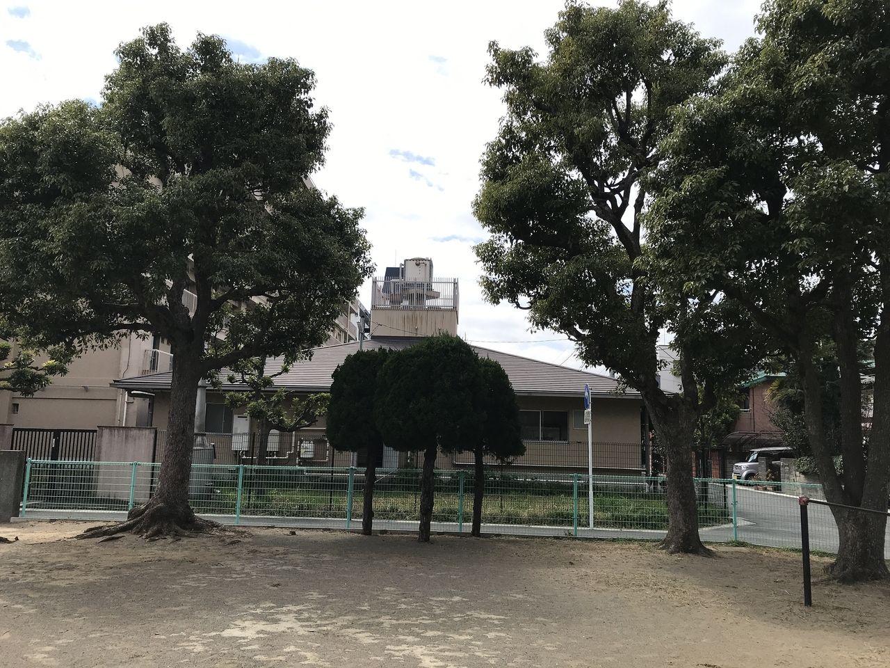 南行徳の湊新田公園の木