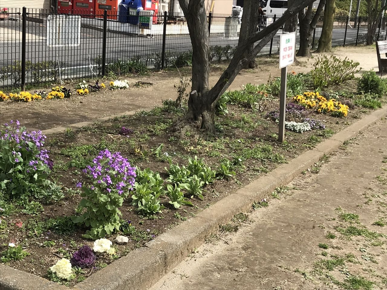 南行徳の中江川添公園の花壇