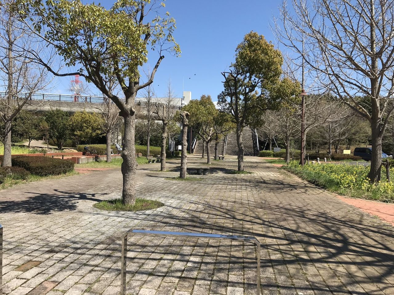 行徳の福栄スポーツ広場の広場への道