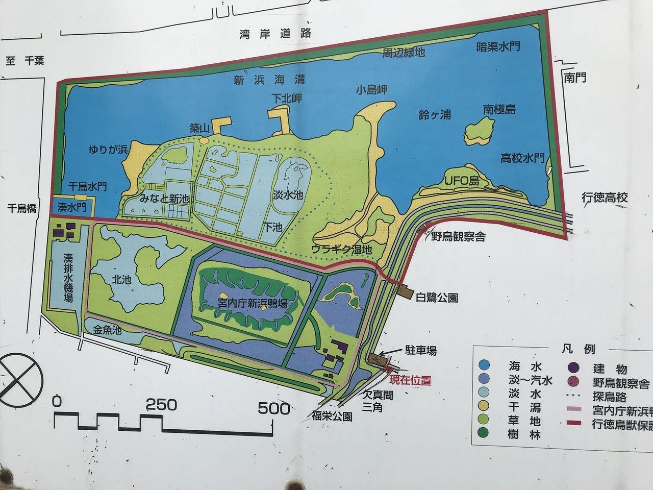 南行徳の白鷺公園の周辺地図
