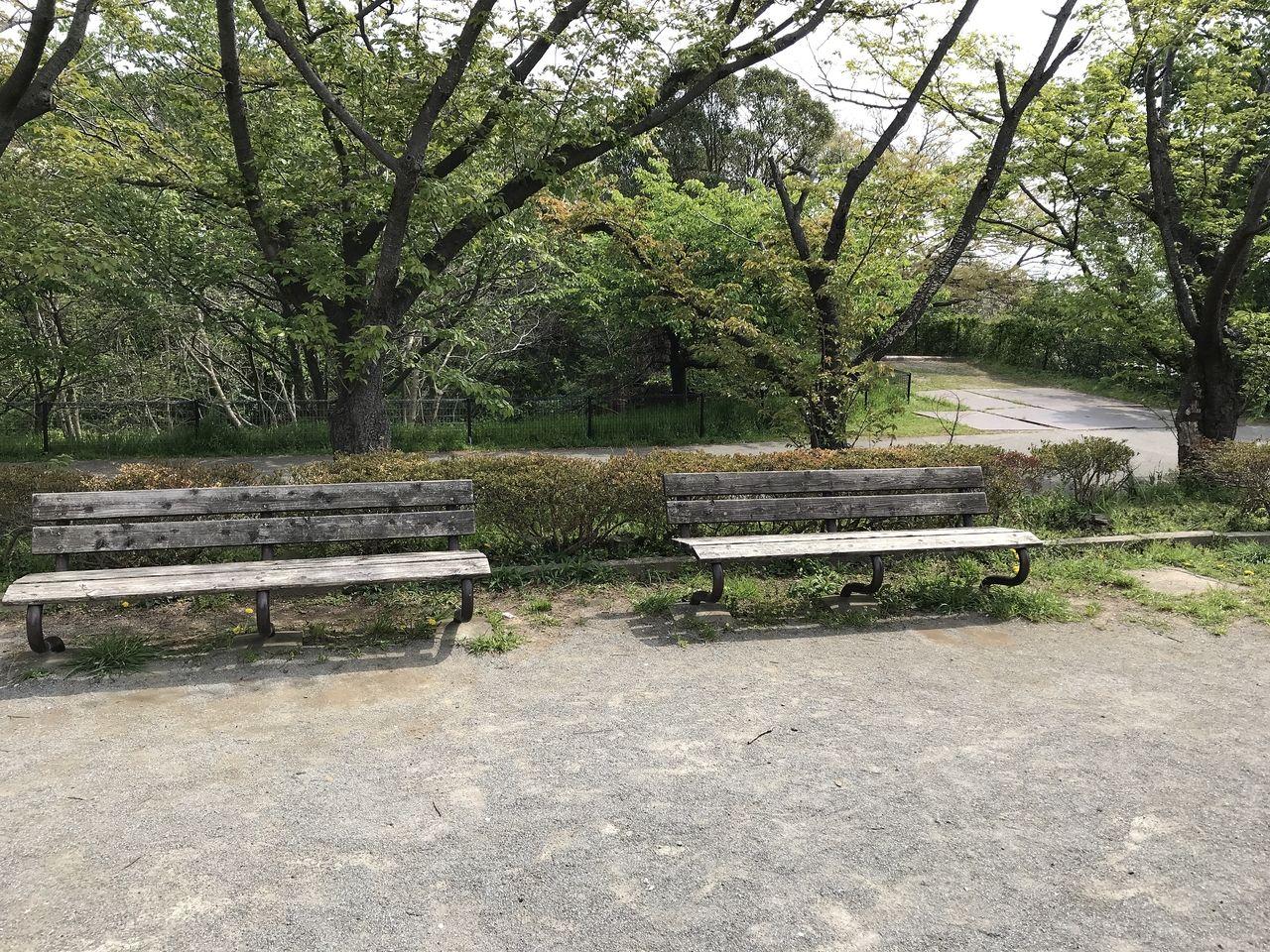 南行徳の白鷺公園のベンチ