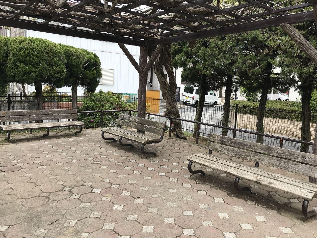 南行徳の新浜公園の藤棚ベンチ