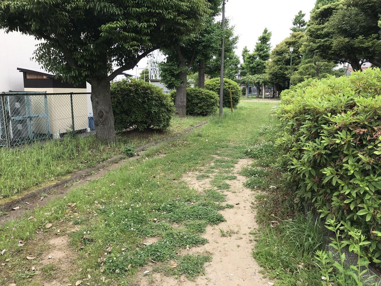 行徳の行徳児童公園の通路