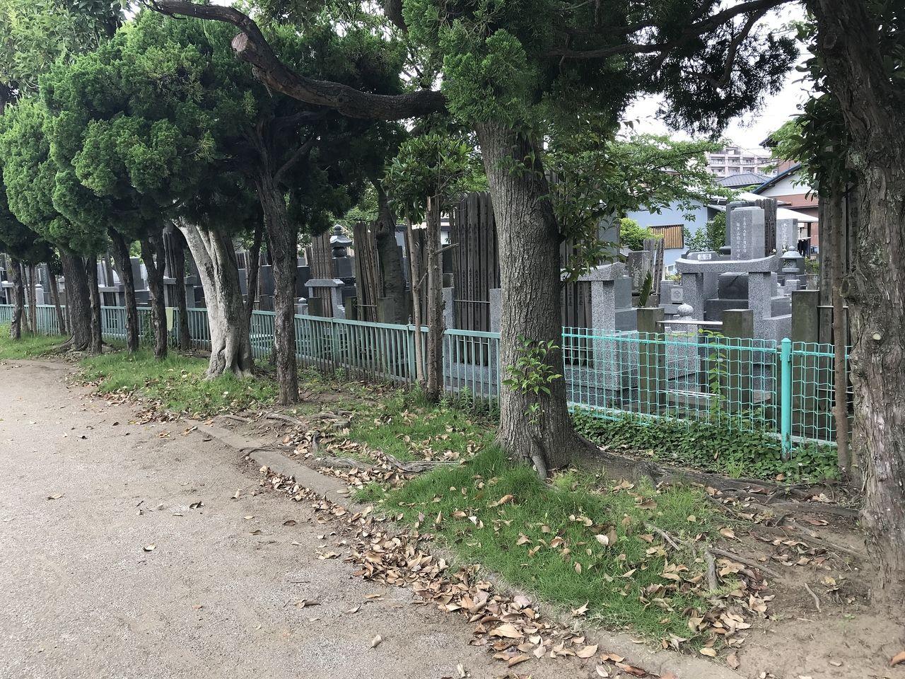妙典の元新田公園の隣の墓地