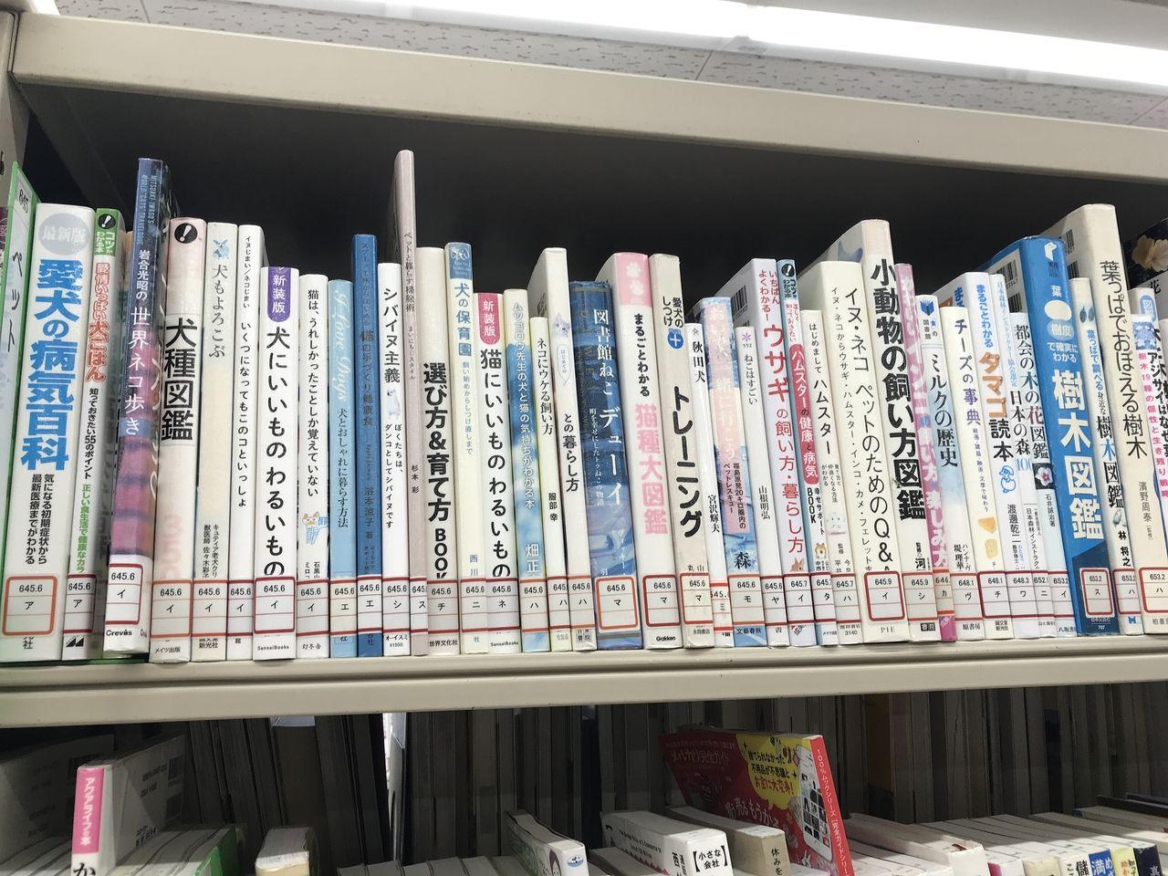 南行徳図書館の動物の本