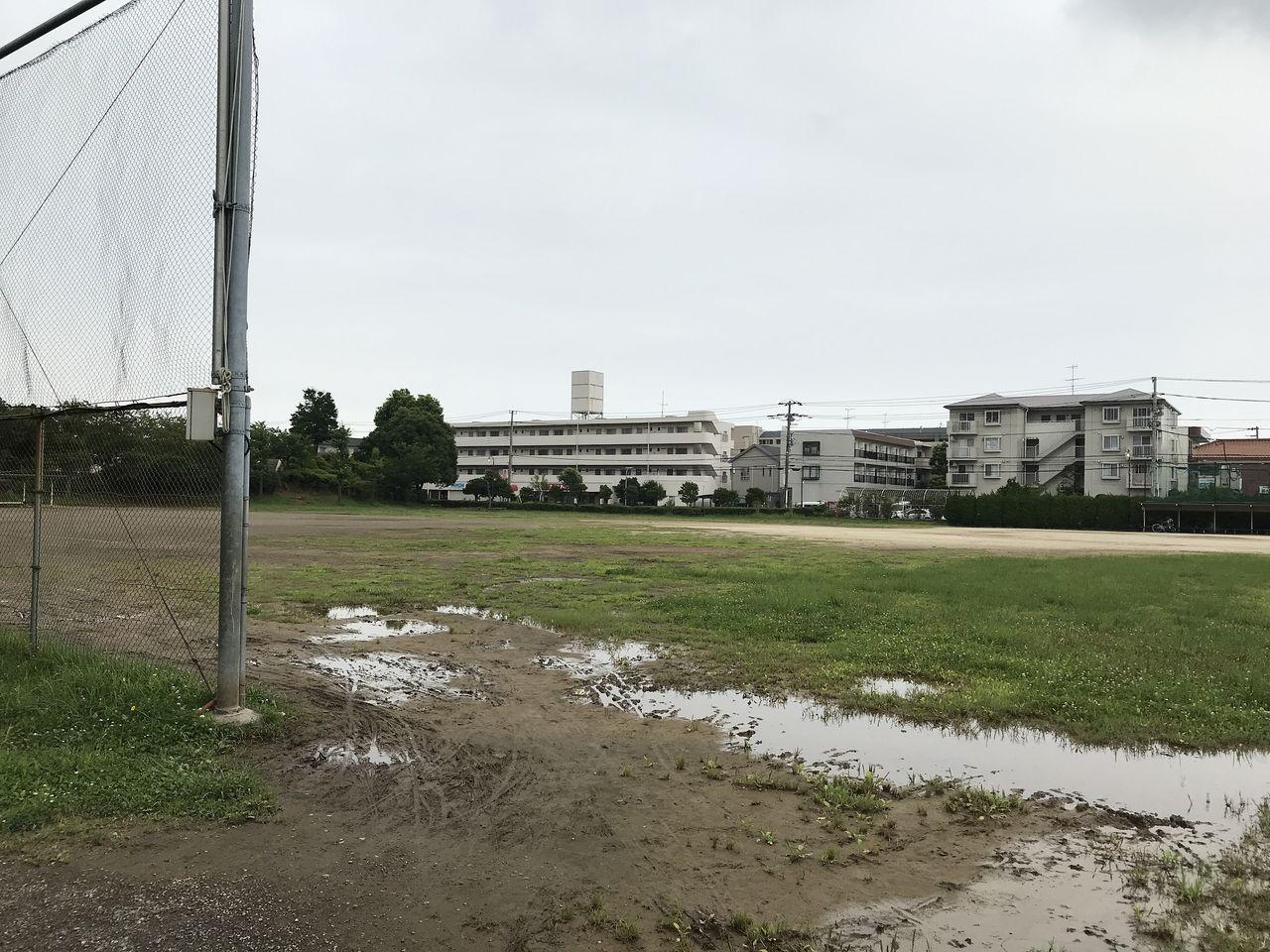 南行徳公園の野球場