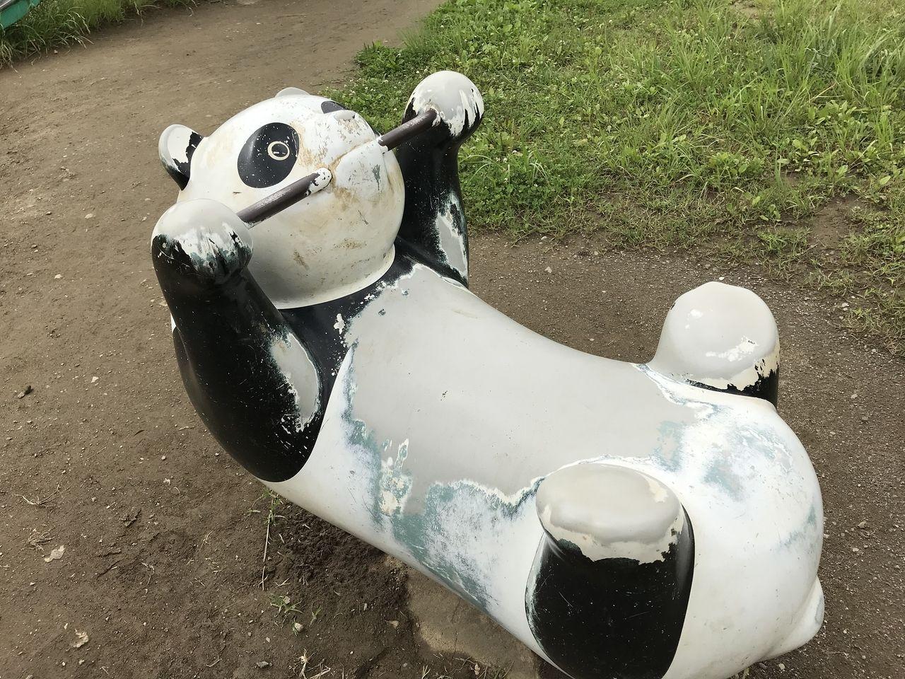 南行徳公園のロッキング遊具パンダのお腹